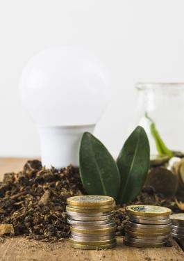 Lámpara Led con naturaleza y monedas